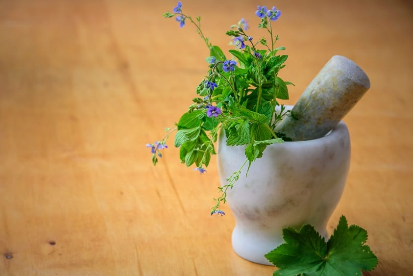 Best Herbalism course tutorial class certification training online