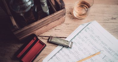 best Harmonica course class certification training online