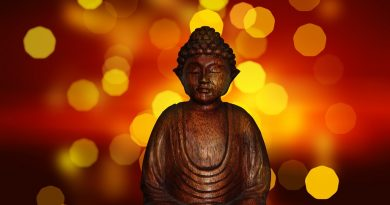best mindfulness course class certification training online