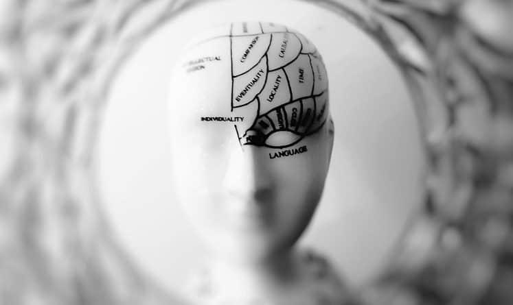 best neuroplasticity course class certification training online