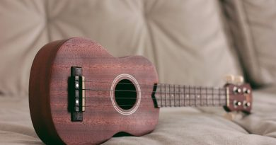 best ukulele course lesson class certification training online