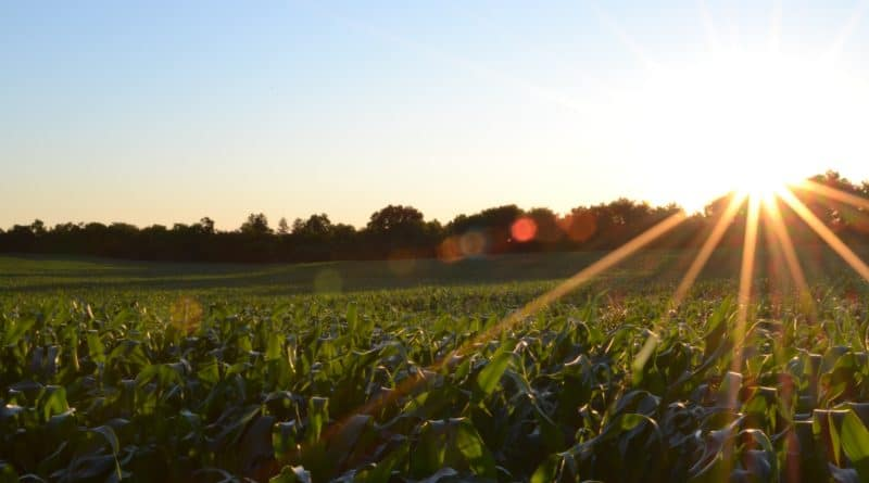 Best Farming course tutorial class certification training online