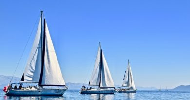 Best Sailing course tutorial class certification training online
