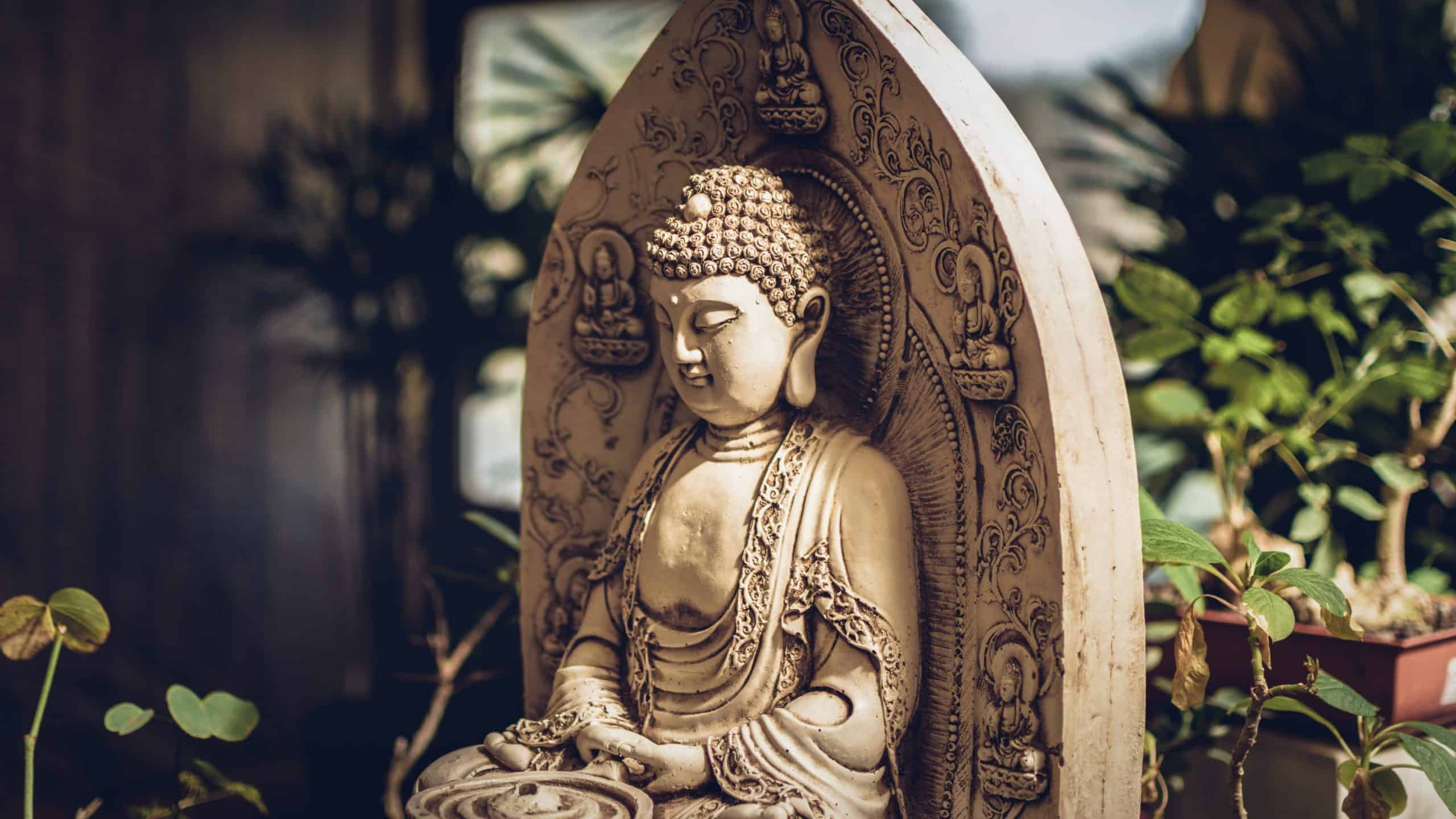 Best Buddhism course tutorial class certification training online