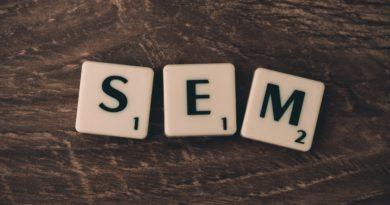 Best SEM course tutorial class certification training online